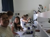 International Course on Developmental Biology