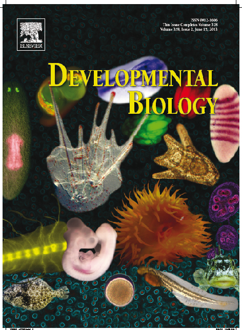 Development Biology