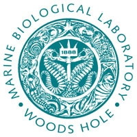 marine biological laboratory woods hole logo